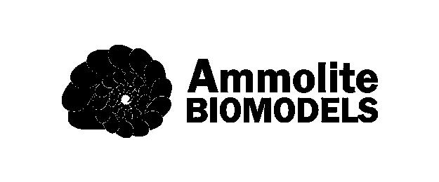 Ammolite Biomodels